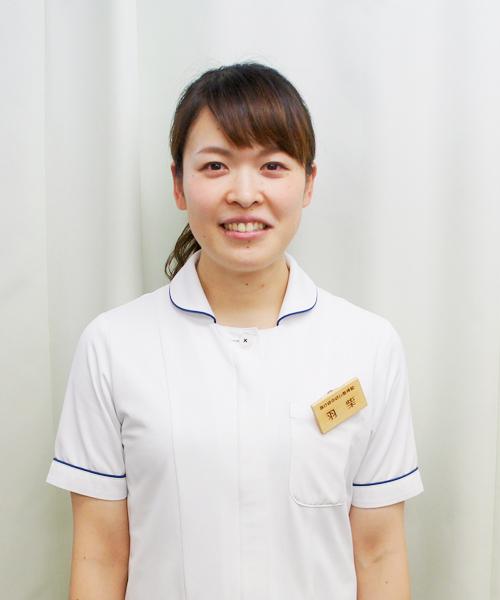 羽柴 亜弓